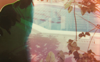 2: Lockdown Polaroids by Christopher Osborne